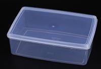 custom plastic food storage containers